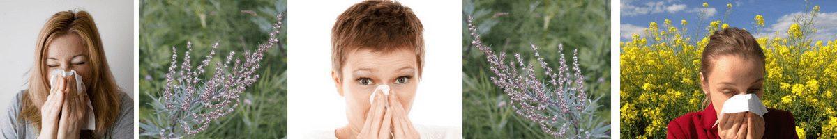 dental health with an allergy